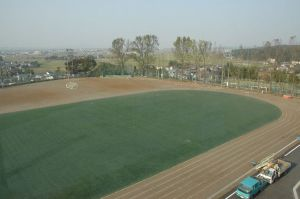 The artificial pitch when the weather was sunny..